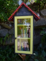 seattle,little library